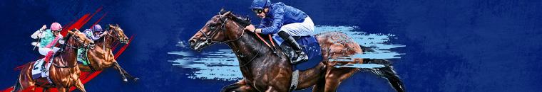 boylesports horse racing